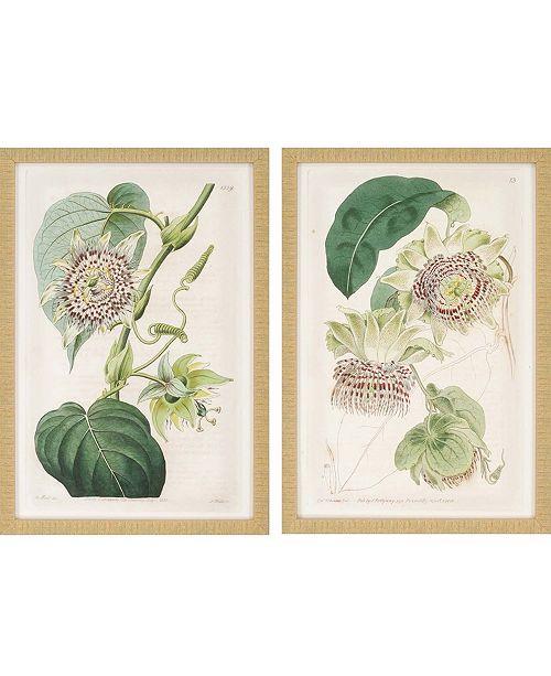 "Paragon Antique Flowers Framed Wall Art Set of 2, 26"" x 18"""
