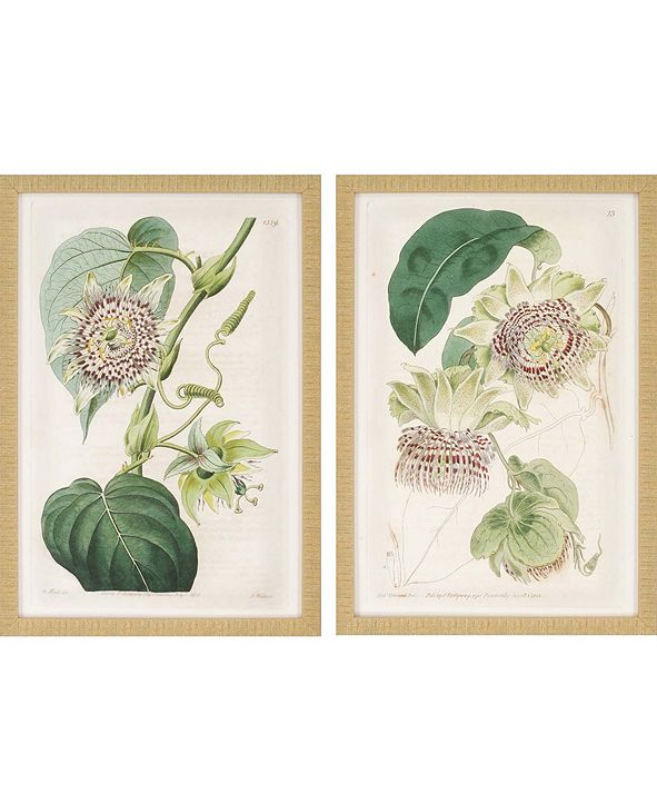 "Paragon Antique Flowers Framed Wall Art Set of 2, 26"" x 18"""