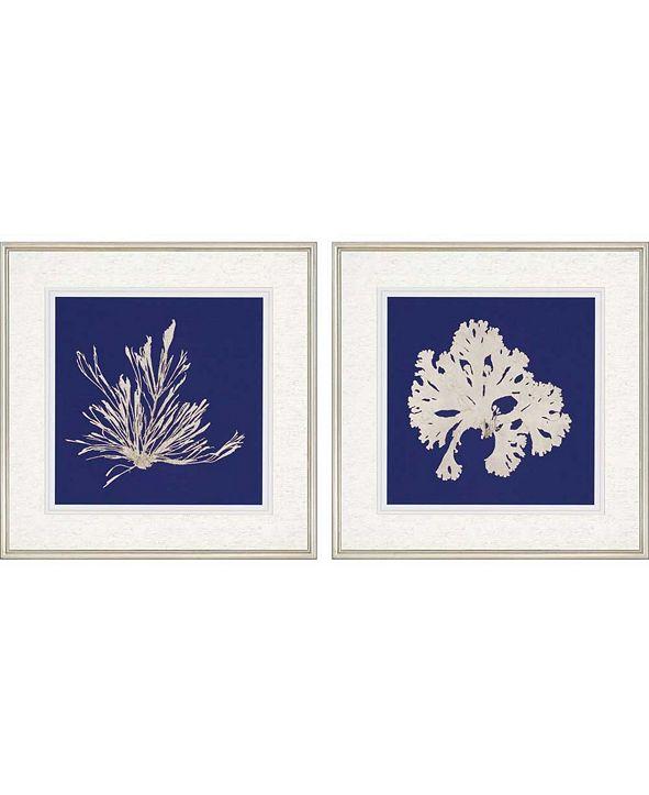 "Paragon Seaweed on Navy II Framed Wall Art Set of 2, 27"" x 27"""