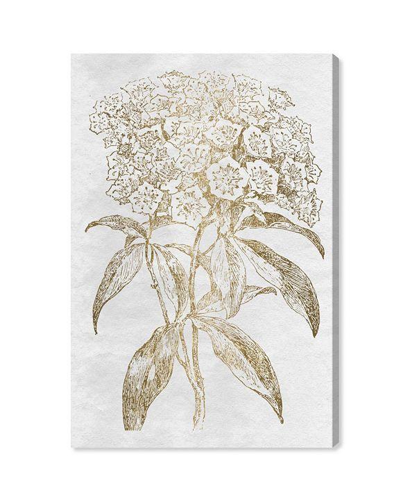 """Oliver Gal Floral Sketch Gold Canvas Art, 24"""" x 36"""""""