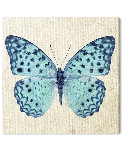 """Oliver Gal Blue Butterfly Canvas Art, 16"""" x 16"""""""