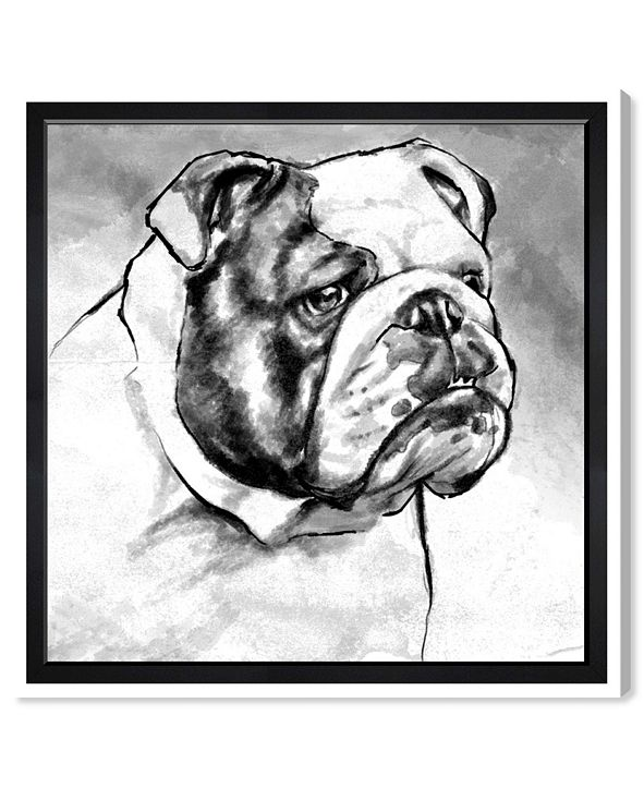 "Oliver Gal English Bulldog Canvas Art, 43"" x 43"""