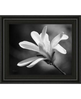 """Magnolia Dreams II by Geyman Vitaly Framed Print Wall Art, 22"""" x 26"""""""