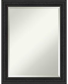 """Shipwreck Framed Bathroom Vanity Wall Mirror, 22"""" x 28"""""""