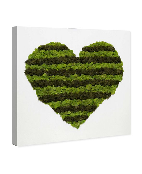 """Oliver Gal Heart of Moss Canvas Art, 43"""" x 43"""""""