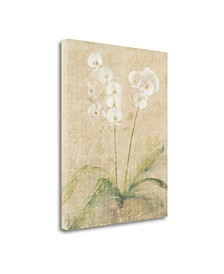 """Orchid Cool by Cheri Blum Giclee Print on Gallery Wrap Canvas, 35"""" x 45"""""""