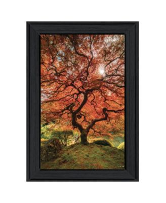 First Colors of Fall II by Moises Levy, Ready to hang Framed Print, Black Frame, 15