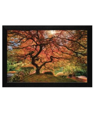 """First Colors of Fall by Moises Levy, Ready to hang Framed Print, Black Frame, 20"""" x 14"""""""