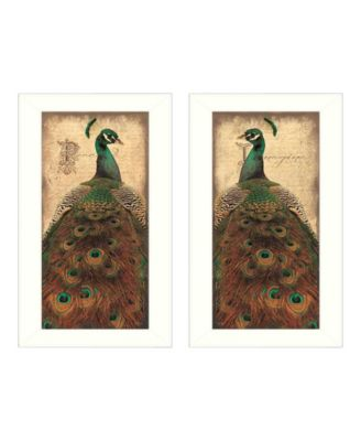 """Peacock Collection By John Jones, Printed Wall Art, Ready to hang, White Frame, 22"""" x 20"""""""
