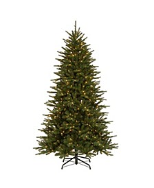 7.5 ft. Easton Spruce Tree with Dual Color® LED Lights