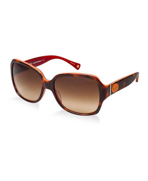 COACH Sunglasses, HC8043 BRIDGET