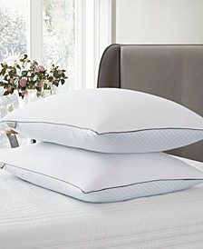 ELLE DÉCOR Summer-Winter White Goose Feather Pillow 2-Pack