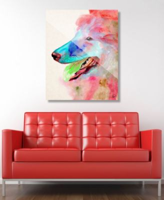 """Scout in Red Dog Abstract 20"""" x 24"""" Acrylic Wall Art Print"""