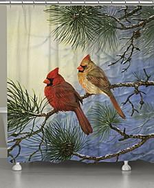 "Winter Solitude 70"" x 72"" Shower Curtain"