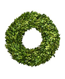 "16"" Preserved Boxwood Wreath"
