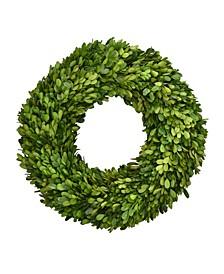 "16"" Preserved Boxwood Wreath"