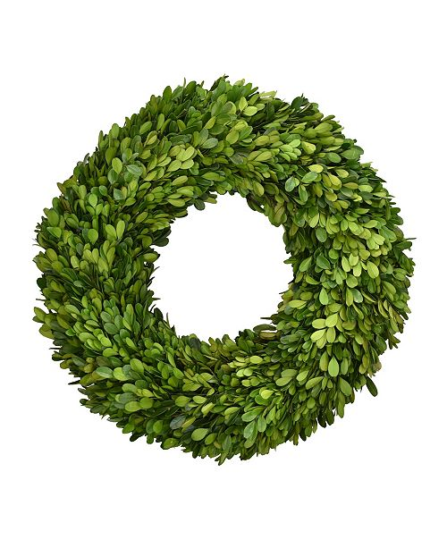 "Mills Floral 16"" Preserved Boxwood Wreath"