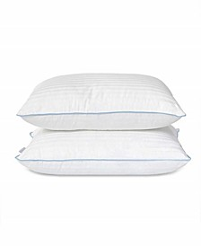 Down Alternative Density 2 Piece Pillow Set