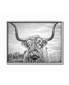 Black and White Highland Cow Photograph Gray Framed Texturized Art Collection