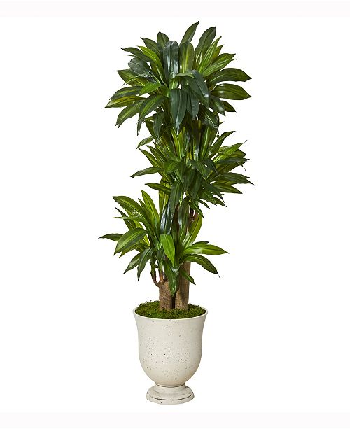 Nearly Natural 61in. Corn Stalk Dracaena Artificial Plant in Decorative Urn Real Touch