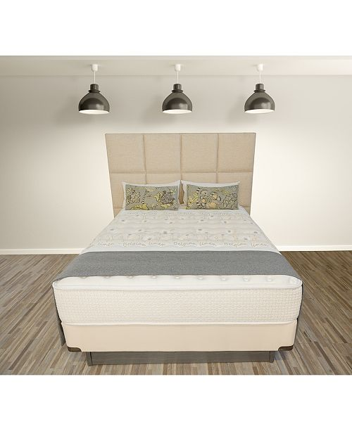 "Paramount Nature's Spa by Eminence 13.5"" Luxury Firm Mattress Set- Queen Split"