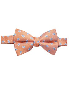 Big Boys Orange Pre-Tied Mini-Pine Silk Bow Tie