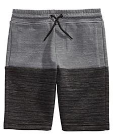 Big Boys Patras Pieced Colorblocked Shorts