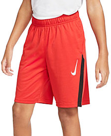 Nike Big Boys Core Training Shorts