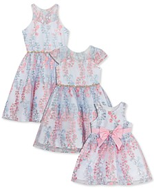 Baby, Toddler, Little & Big Girls Embroidered Mesh Dress