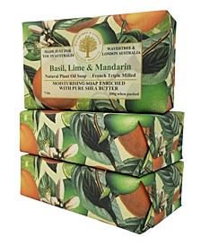 Basil, Lime and Mandarin Soap with Pack of 3, Each 7 oz