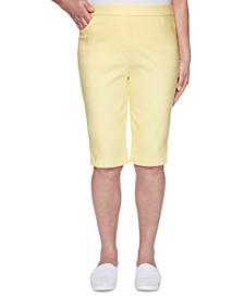 Petite Spring Lake Allure Stretch Bermuda Shorts