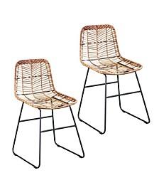 Kari Rattan Outdoor Chairs 2 Piece Set