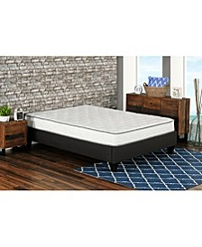 "Primo Berri 8"" Pocket Coil with Lumber Gel Firm Mattress - California King"