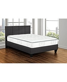 "Primo Brinley 12"" Pocket Coil Cushion Firm Mattress - Queen"