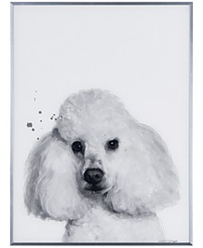 "Poodle Pet Paintings on Reverse Printed Glass Encased with a Gunmetal Anodized Frame Wall Art, 24"" x 18"" x 1"""