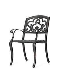Austin Outdoor Cast Dining Chairs, Set of 2