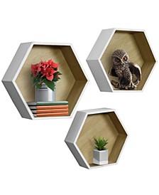 Floating Hexagon Shelves, Set of 3