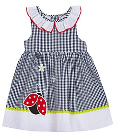 Little Girls Ladybug Seersucker Gingham Dress