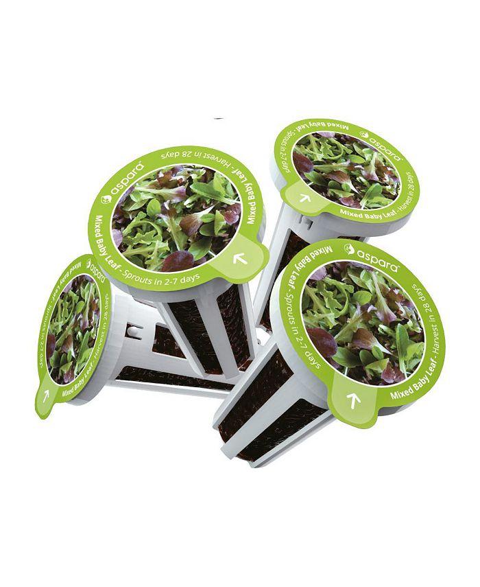 Aspara - KLB0001 8 Capsule Seed Kit -Mixed Baby Leaf