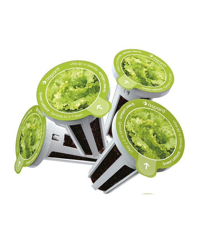 Aspara - KLG0001 8 capsule seed kit - Green Lettuce