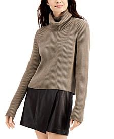 Katerina Knit Turtleneck Sweater
