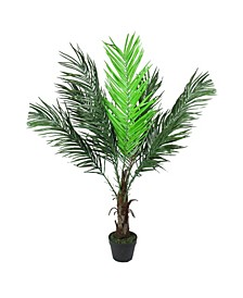 Potted Phoenix Palm and Artificial Christmas Tree-Unlit