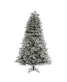Flocked Colorado Mountain Fir Artificial Christmas Tree with 700 Warm Microdot Multifunction LED Lights with Instant Connect Technology and 1455 Bendable Branches