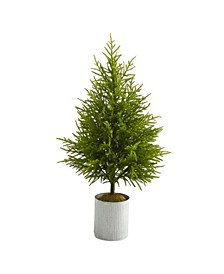 "Norfolk Island Pine ""Natural Look"" Artificial Tree"