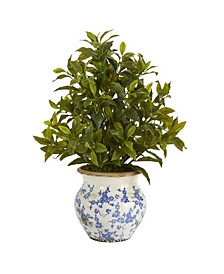 Coffee Leaf Artificial Plant in Vintage-Inspired Floral Planter, Real Touch