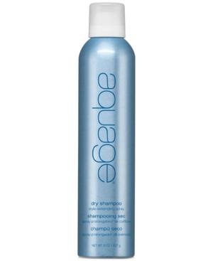 Dry Shampoo Style-Extending Spray