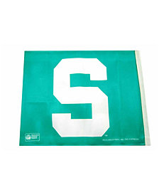 Rico Industries  Michigan State Spartans Car Flag