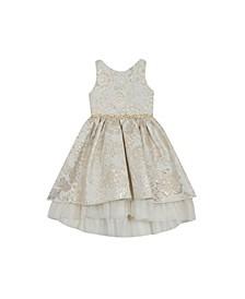 Toddler Girls Brocade Dress with Mesh Ruffle Hem