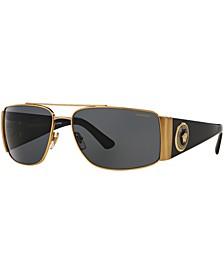 Polarized Sunglasses , VE2163