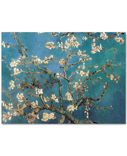 "Trademark Global 'Almond Blossoms' by Vincent van Gogh 18"" x 24"" Canvas Print"